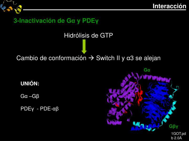 3-Inactivación de G