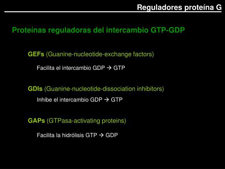Proteínas reguladoras del intercambio GTP-GDP
