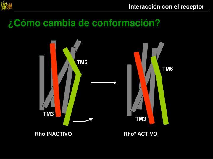 Interacción con el receptor