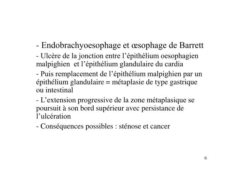 - Endobrachyoesophage et œsophage de Barrett