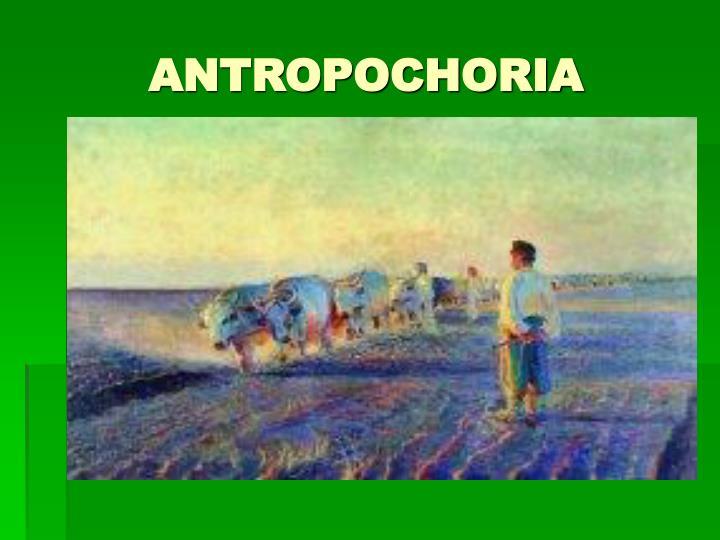 ANTROPOCHORIA