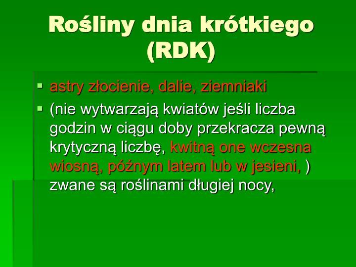 Rośliny dnia krótkiego (RDK)