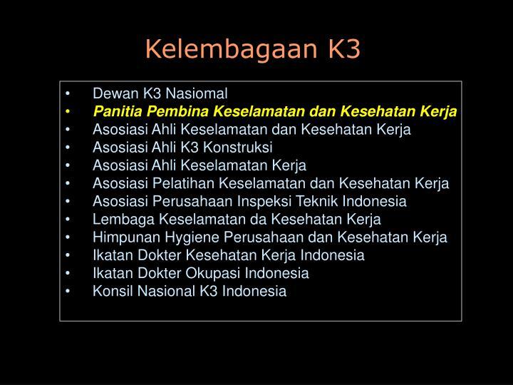 Kelembagaan K3