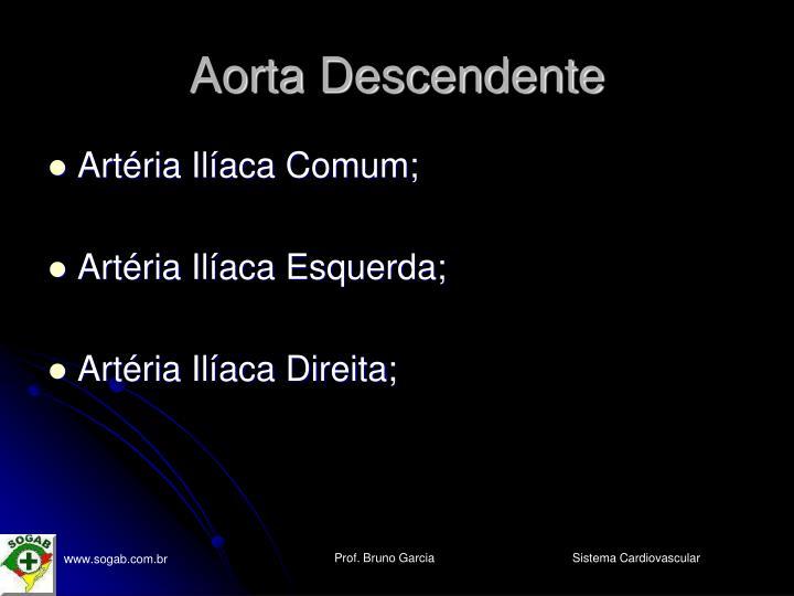 Aorta Descendente