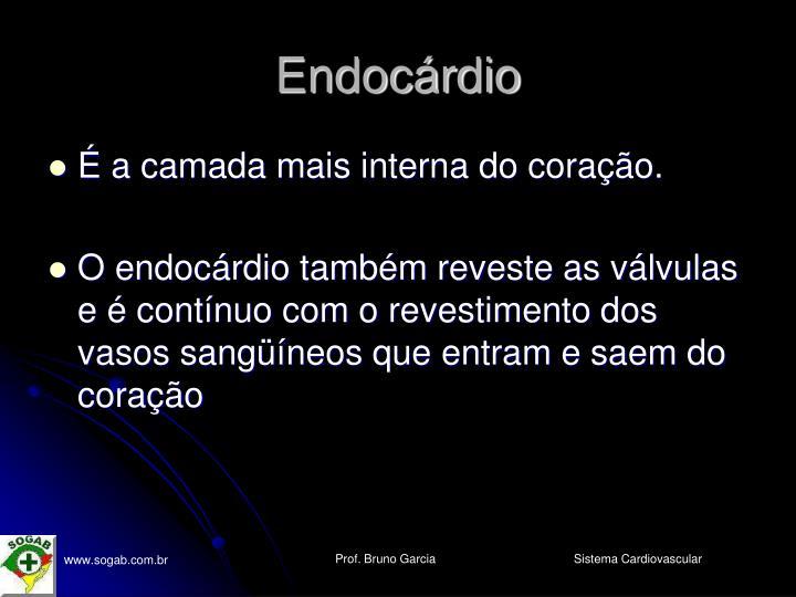 Endocárdio