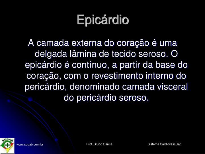Epicárdio