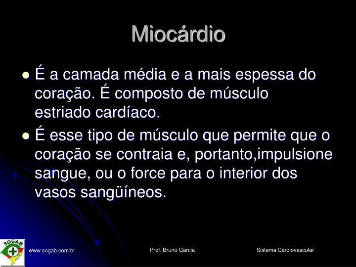 Miocárdio