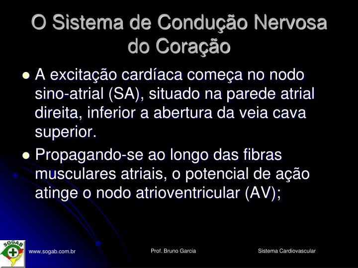 O Sistema de Condução Nervosa do Coração
