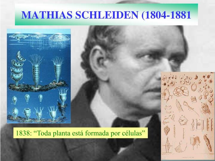 MATHIAS SCHLEIDEN (1804-1881