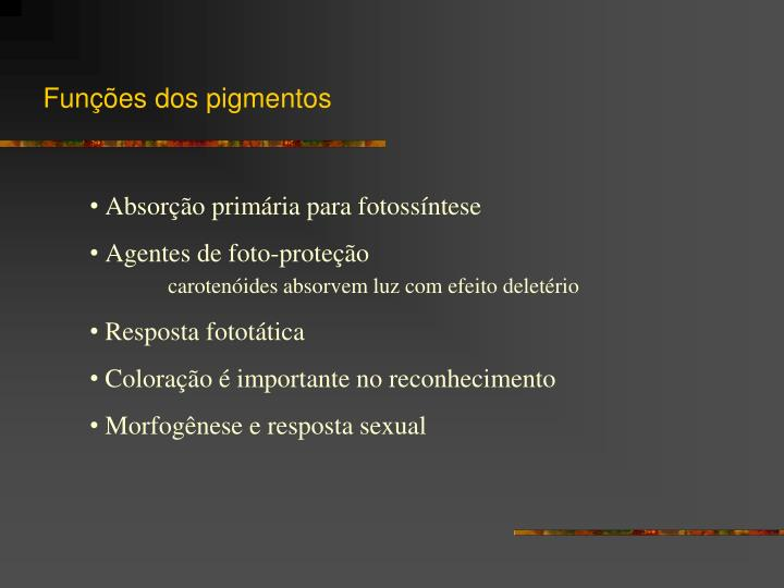 Funções dos pigmentos