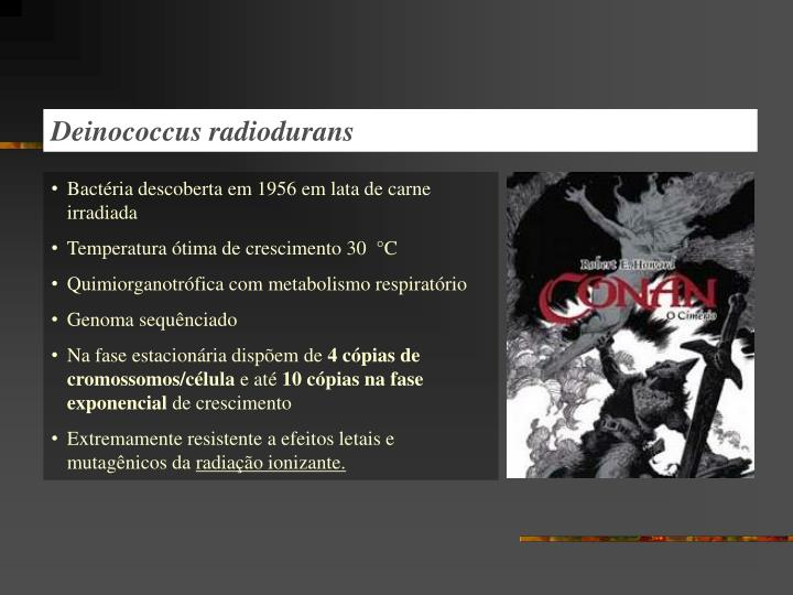 Deinococcus radiodurans