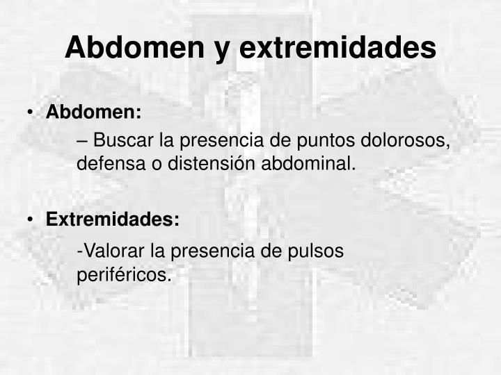 Abdomen y extremidades