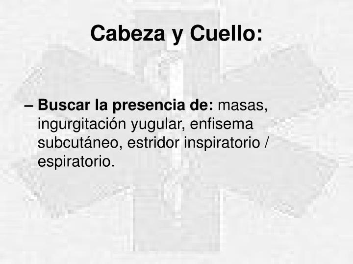 Cabeza y Cuello: