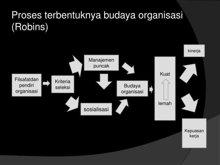 Proses terbentuknya budaya organisasi (Robins)