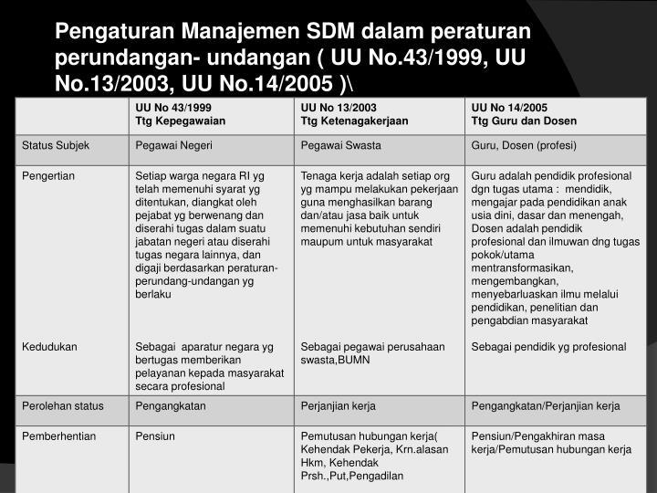 Pengaturan Manajemen SDM