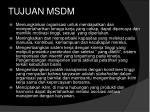 tujuan msdm1