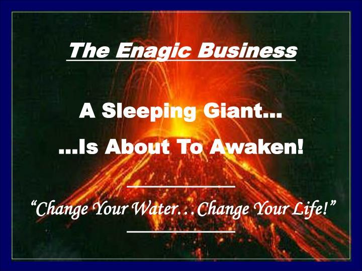 The Enagic Business