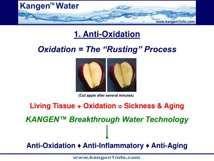 1. Anti-Oxidation