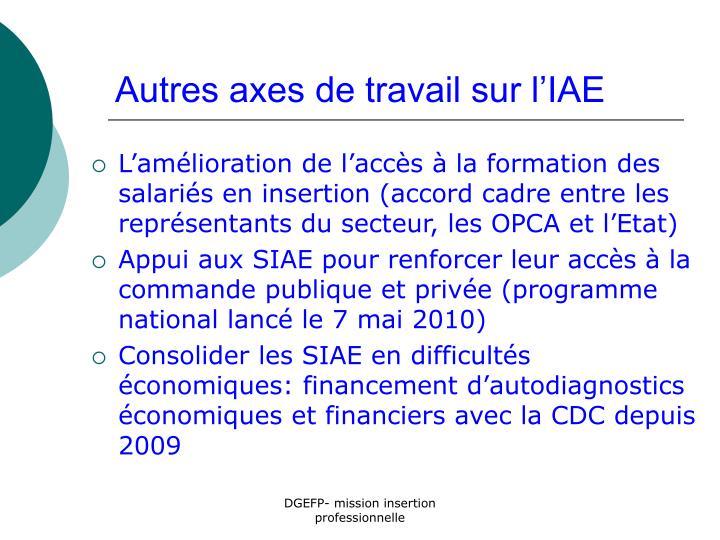 Autres axes de travail sur l'IAE