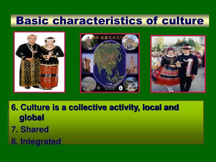 Basic characteristics of culture