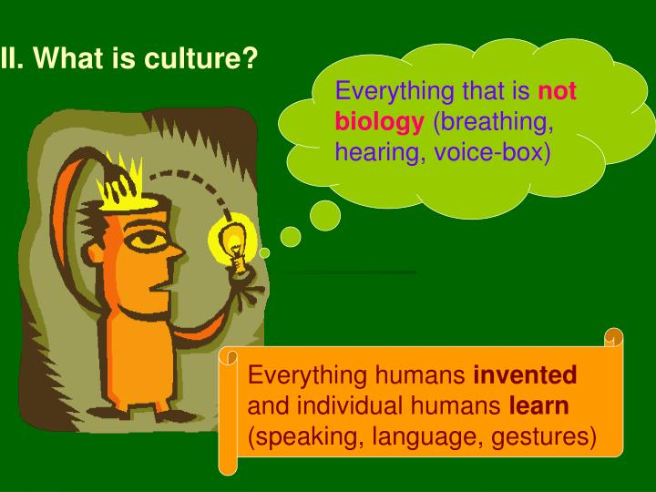 II. What is culture?
