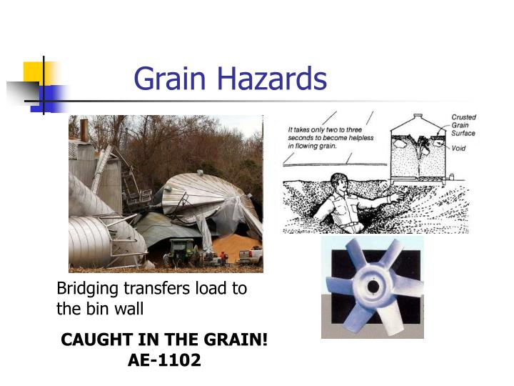Grain hazards