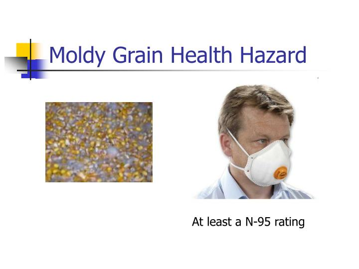Moldy Grain Health Hazard