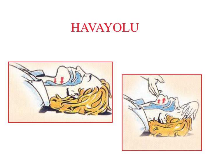 HAVAYOLU