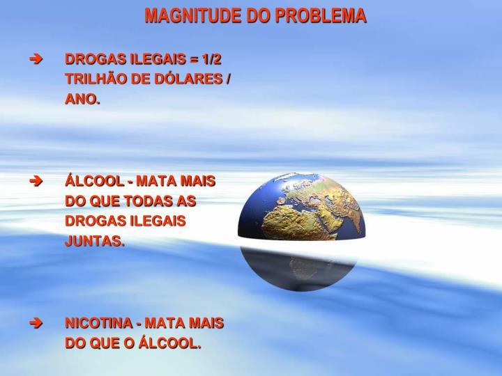 MAGNITUDE DO PROBLEMA