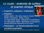 le coude anatomie de surface et examen clinique1