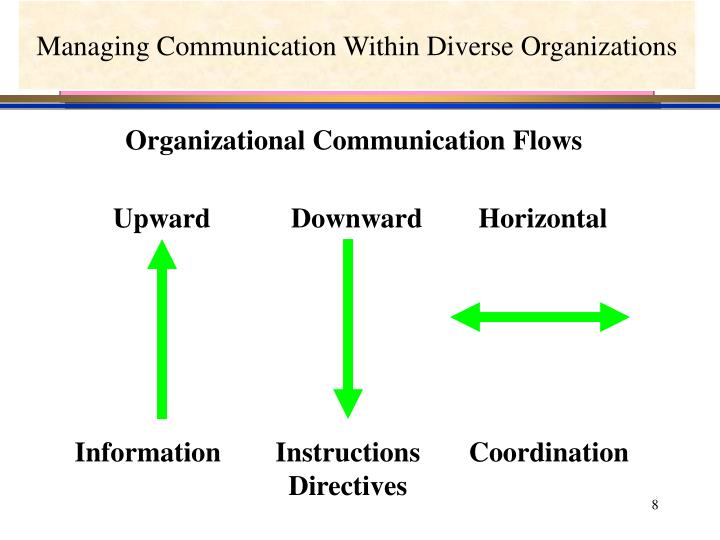 Managing Communication Within Diverse Organizations