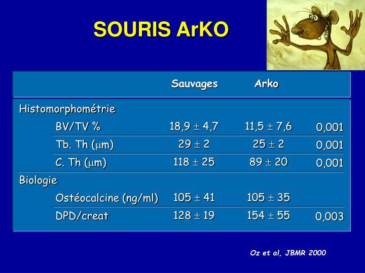 SOURIS ArKO