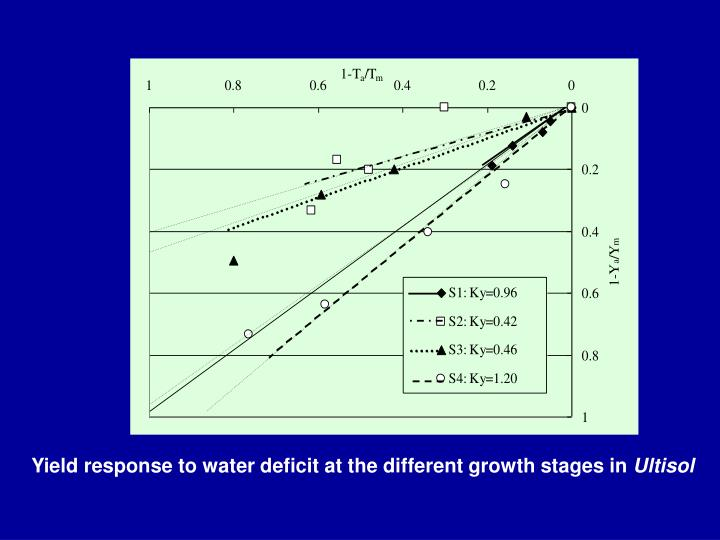 Yield response to water deficit at the different growth stages in
