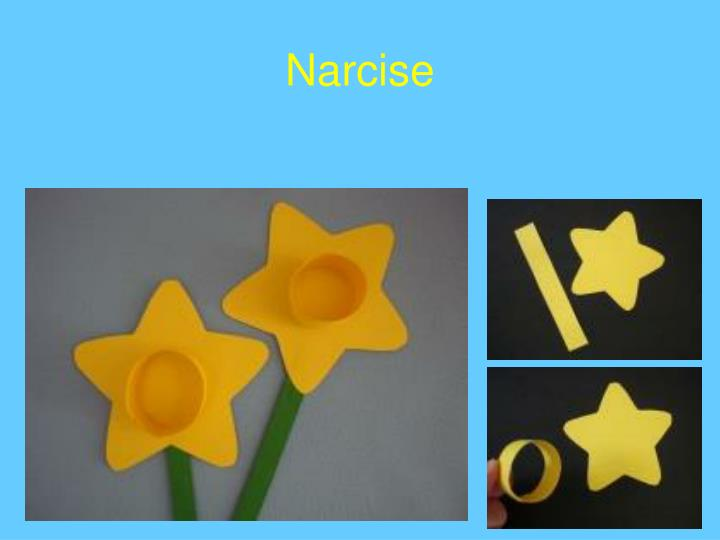 Narcise