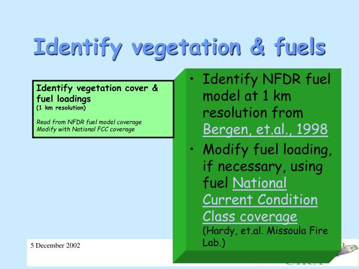 Identify vegetation & fuels