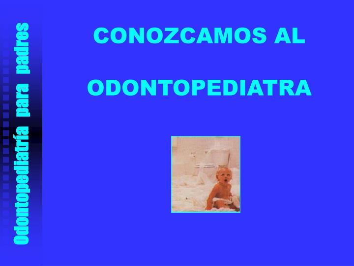 CONOZCAMOS AL