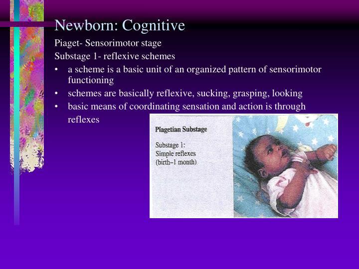 Newborn: Cognitive