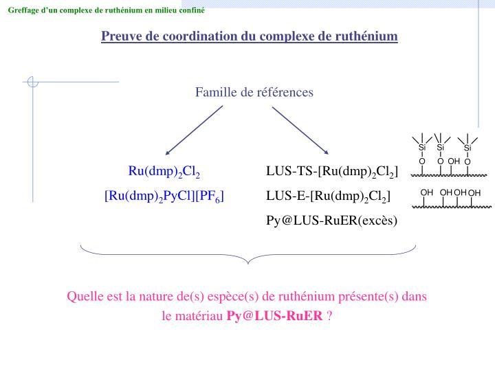 Greffage d'un complexe de ruthénium en milieu confiné