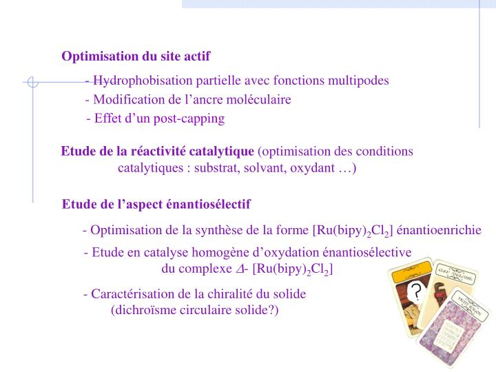 Optimisation du site actif