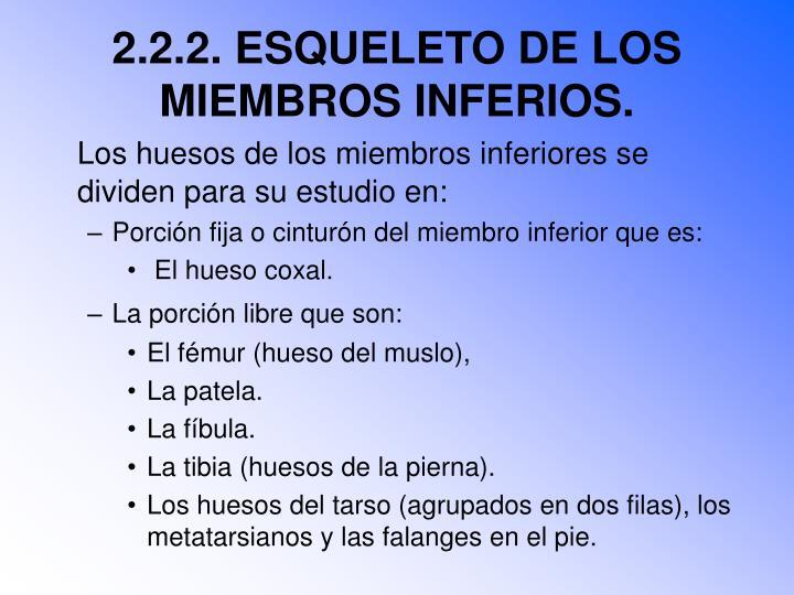 2.2.2. ESQUELETO DE LOS MIEMBROS INFERIOS.