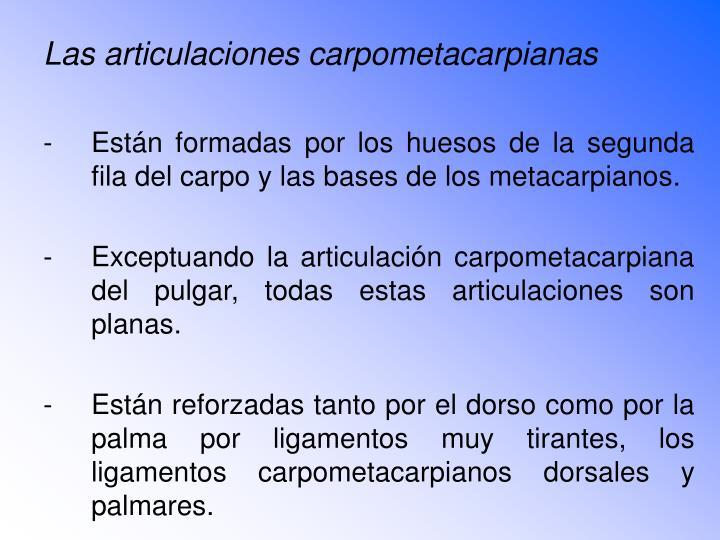 Las articulaciones carpometacarpianas