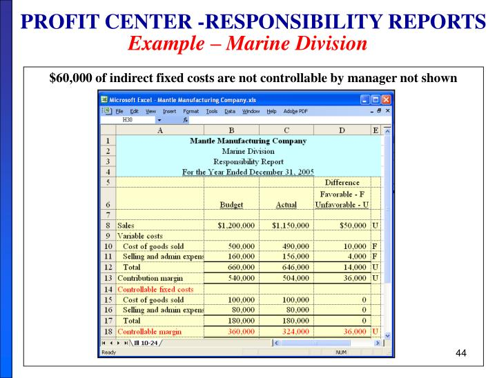 PROFIT CENTER -RESPONSIBILITY REPORTS