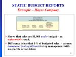 static budget reports example hayes company1
