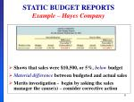 static budget reports example hayes company2