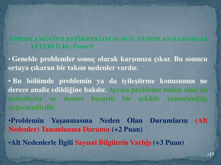 3-PROBLEMİN/İYİLEŞTİRMEKONUSUNUN TANIMLANMASINDAKİ    YETERLİLİK: Puanı:5