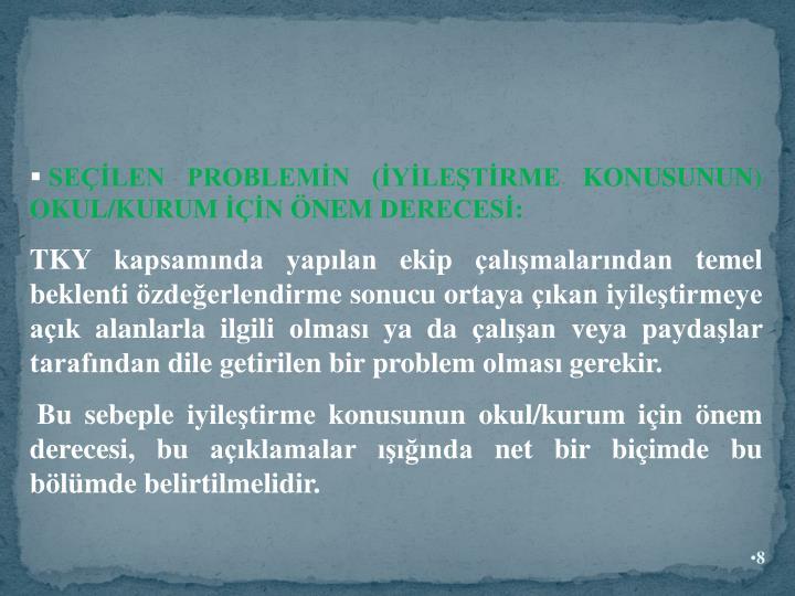 SELEN PROBLEMN (YLETRME KONUSUNUN) OKUL/KURUM N NEM DERECES: