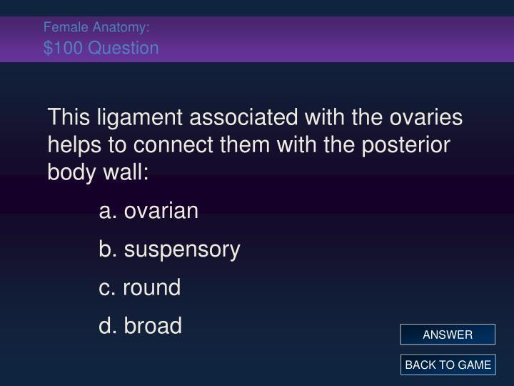 Female Anatomy: