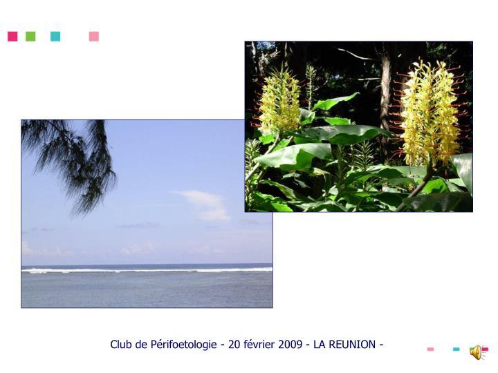 Club de Périfoetologie - 20 février 2009 - LA REUNION -
