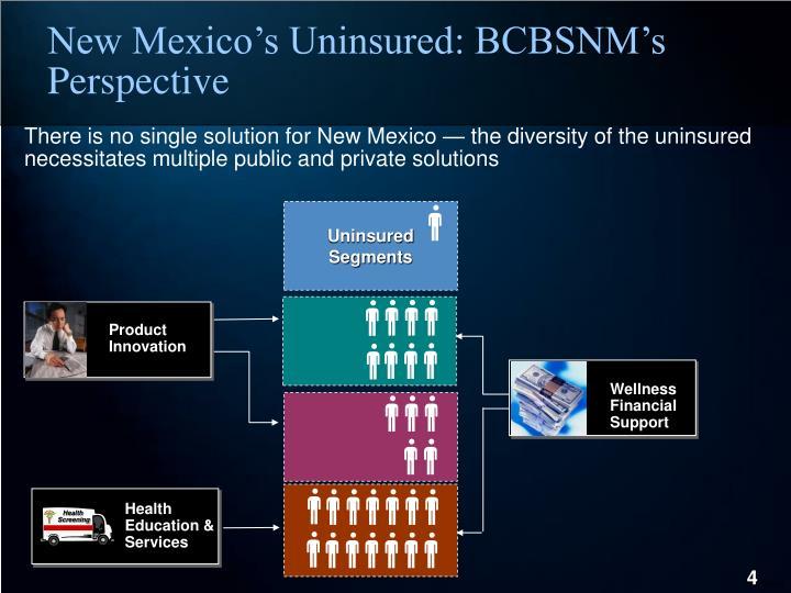 Uninsured Segments