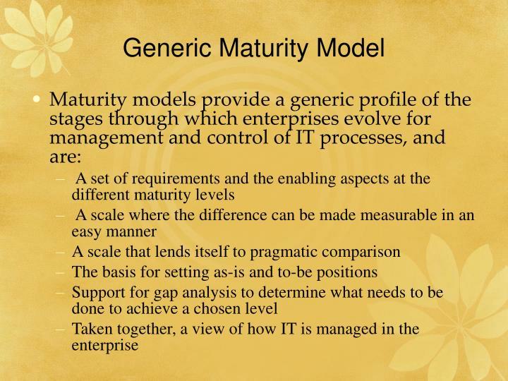 Generic Maturity Model